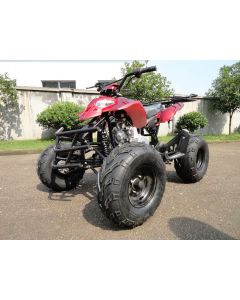 JOY RIDE BAJA SHREK 125CC ATV For Sale
