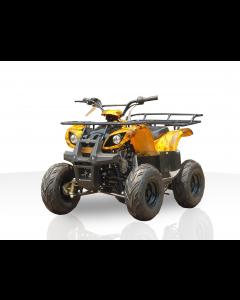 JOY RIDE MONARCH 125CC ATV For Sale