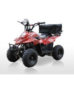JOY RIDE BORDOK 110CC ATV For Sale