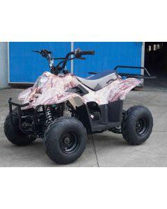 JOY RIDE LADY BUG 110CC ATV For Sale