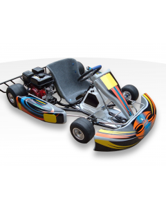 STING RAY 200cc RACE GO KART For Sale