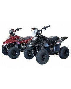 JOY RIDE TARANTULA XS 110CC ATV For Sale