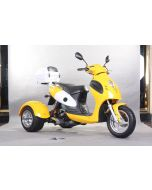JOY RIDE CYCLOPS 50cc TRIKE For Sale