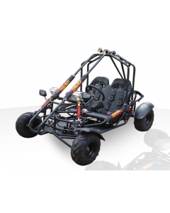 CENTIPEDE 110CC GO KART For Sale