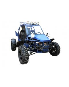 JOY RIDE V-Twin 800CC DUNE BUGGY For Sale