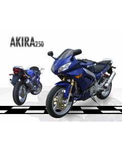 JOY RIDE AKIRA 250cc MOTORCYCLE For Sale