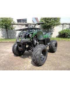 JOY RIDE HOUZER 125CC QUAD For Sale