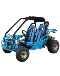 JOY RIDE POWER PUG 250CC GO KART For Sale
