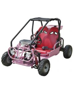 HONEY BADGER 110CC GO KART For Sale