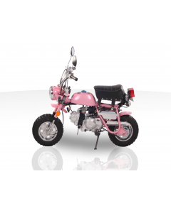 SPIDER MONKEY 110cc MINI BIKE For Sale