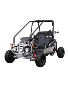 ROAD RUNNER 100CC GO KART For Sale